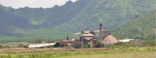 A derelict sugarcane mill near Koloa, Kaua'i, Hawaii